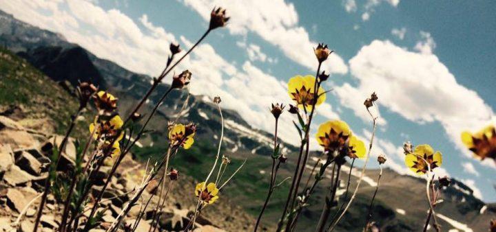 Miracle At Mt.Sneffles